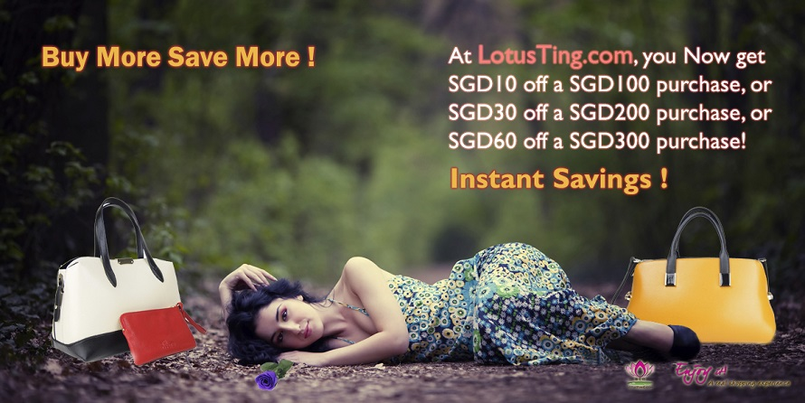 lotstng singapore buy more and save more